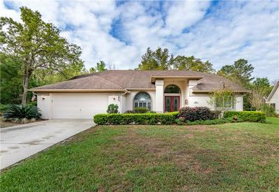 43 HOLLYHOCK CT, HOMOSASSA, FL 34446 - Photo 1