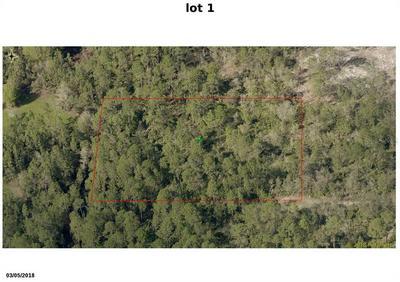 WINCHESTER LAKE DRIVE #LOT 26, De Leon Springs, FL 32130 - Photo 2