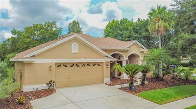 10354 ABBOTSFORD DR, Tampa, FL 33626 - Photo 1