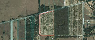 00000 SE 156TH PLACE ROAD, Weirsdale, FL 32195 - Photo 1