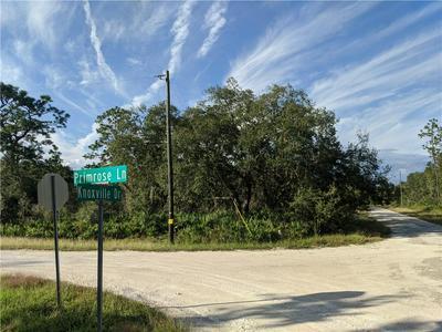 PRIMROSE LN, WEBSTER, FL 33597 - Photo 1