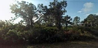 12103 KINGSBURY AVE, PORT CHARLOTTE, FL 33981 - Photo 1