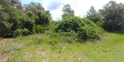 SE 183RD COURT, Ocklawaha, FL 32179 - Photo 1
