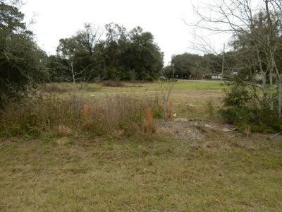 3031 SW 7TH ST, Williston, FL 32696 - Photo 2