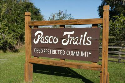 11955 PASCO TRAILS BLVD, SPRING HILL, FL 34610 - Photo 2