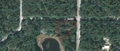 TBD NE 239TH STREET, Fort Mc Coy, FL 32134 - Photo 1