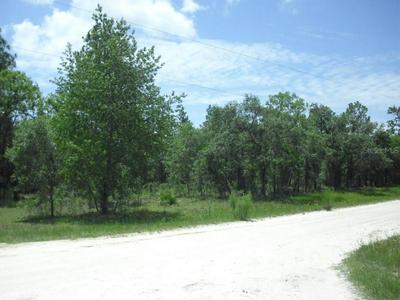 LOT 1 SE 123 TERRACE, Morriston, FL 32668 - Photo 1