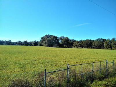 17851 NE STATE ROAD 121, Williston, FL 32696 - Photo 2
