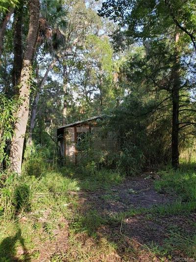 9699 W YULEE DR, Homosassa, FL 34448 - Photo 1