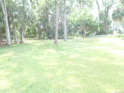 11695 W GINGERLY PATH, HOMOSASSA, FL 34448 - Photo 2