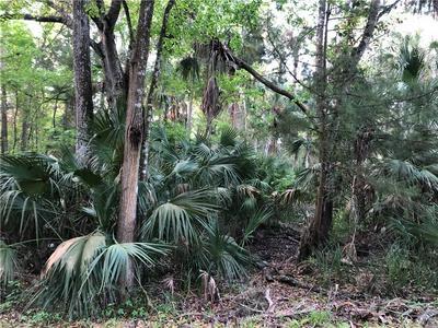10464 W LARCHWOOD ST, HOMOSASSA, FL 34448 - Photo 2