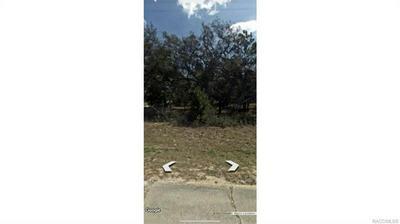 2988 W SUN PL, Citrus Springs, FL 34433 - Photo 2