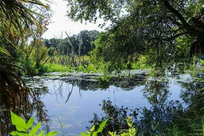 4150 E LAKE PARK DR, Hernando, FL 34442 - Photo 2