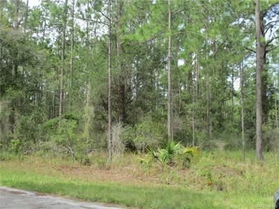9506 N BEECHTREE WAY, Crystal River, FL 34428 - Photo 1
