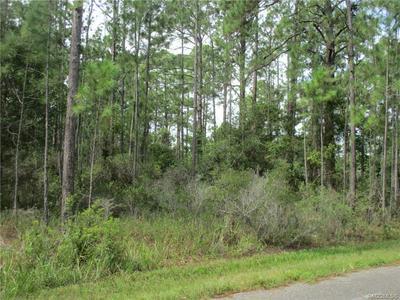 9506 N BEECHTREE WAY, Crystal River, FL 34428 - Photo 2