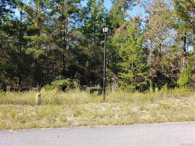 6 HEUCHERA CT E, Homosassa, FL 34446 - Photo 2