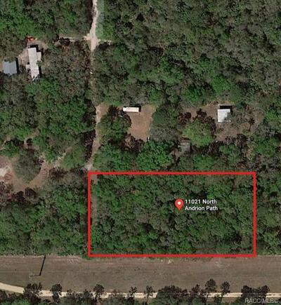 11021 N ANDRION PATH, Inglis, FL 34449 - Photo 1