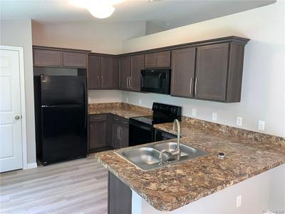 3130 W DORONICUM PL, Citrus Springs, FL 34433 - Photo 2