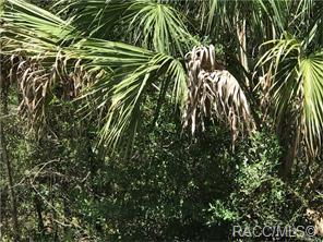 8391 N FIREFLY TER, Crystal River, FL 34428 - Photo 2