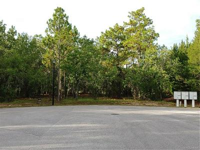 54 HIGHWOOD PATH, Homosassa, FL 34446 - Photo 1