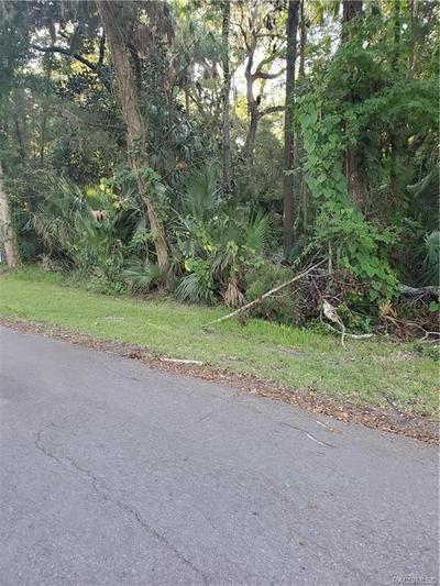 N/A NW 21ST STREET, Crystal River, FL 34429 - Photo 2