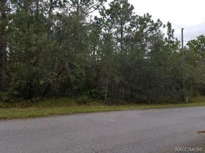 14 WHITEWOOD ST, Homosassa, FL 34446 - Photo 1
