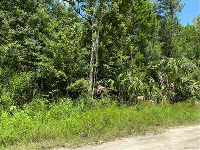 182 N CANDLE PT, Crystal River, FL 34429 - Photo 1