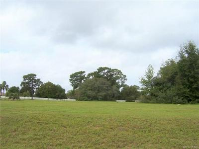 502 N SPEND A BUCK DR, Inverness, FL 34453 - Photo 1