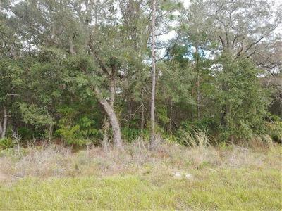 6647 W OAK PARK LN, Homosassa, FL 34446 - Photo 1