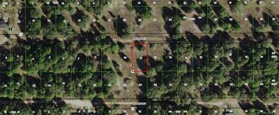 2411 REAGAN ST, INVERNESS, FL 34453 - Photo 2