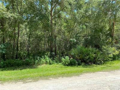 9645 W SANDRA ST, Crystal River, FL 34428 - Photo 1