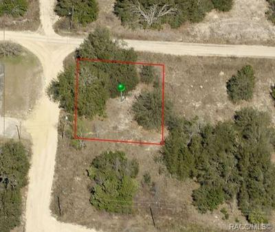 2511 WILSON ST, INVERNESS, FL 34453 - Photo 1