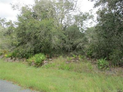 11927 N COCKSCOMB DR, Crystal River, FL 34428 - Photo 2