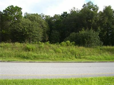 161 W NORVELL BRYANT HWY, Hernando, FL 34442 - Photo 2