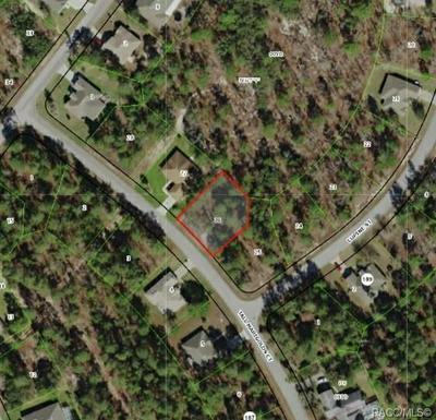 8 TALL MARIGOLDS CT, Homosassa, FL 34446 - Photo 1