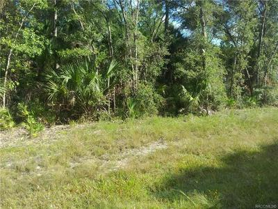 0 193RD PLACE, Inglis, FL 34449 - Photo 1