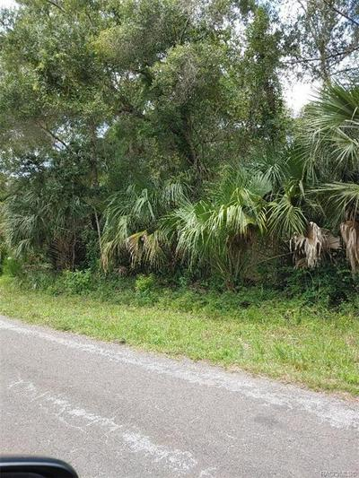 12399 W RIVERWOOD DR, Crystal River, FL 34428 - Photo 2