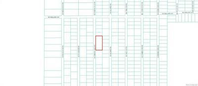 LOT 54 WINDING HILLS ROAD, Dunnellon, FL 34431 - Photo 2