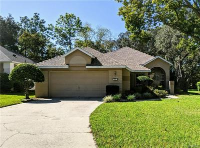20 W BYRSONIMA LOOP, Homosassa, FL 34446 - Photo 1