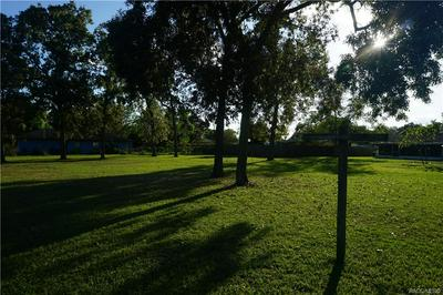 0 DOLPIN DR, SUMMERFIELD, FL 34491 - Photo 1
