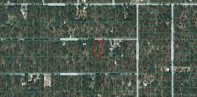LOT 6 SW GREEN BAY DRIVE, Dunnellon, FL 34431 - Photo 1