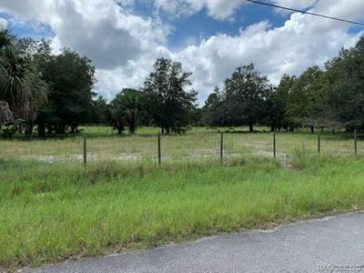 6670 N PARAQUA CIR, Crystal River, FL 34428 - Photo 2