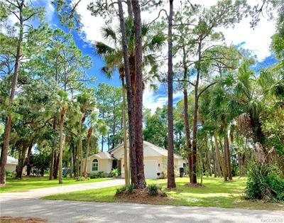 7 NANCY PKWY, YANKEETOWN, FL 34498 - Photo 2
