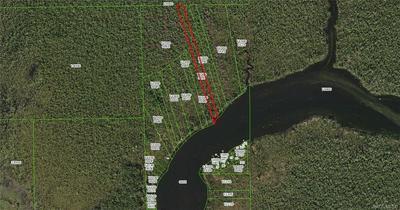 10187 CHASSAHOWITZKA RIVER, Homosassa, FL 34446 - Photo 1