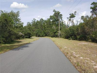 000 SW 178TH LANE ROAD, Other, FL 34473 - Photo 2