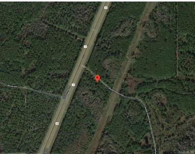 0 HIGHWAY 19, Other, FL 34449 - Photo 1