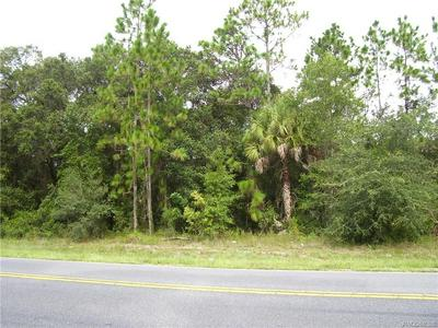 9300 W TOM MASON DR, Crystal River, FL 34428 - Photo 2