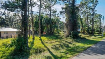 4 HICKORY AVE, Yankeetown, FL 34498 - Photo 2