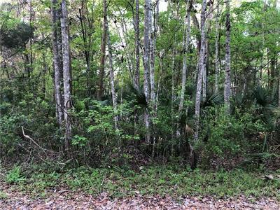 10464 W LARCHWOOD ST, HOMOSASSA, FL 34448 - Photo 1