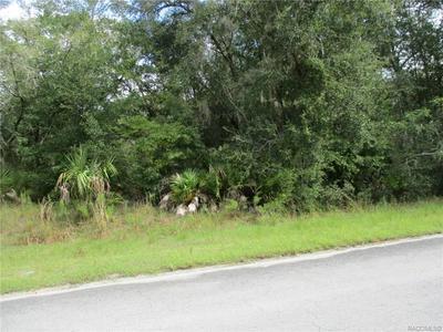 12487 W FLAXEN DR, Crystal River, FL 34428 - Photo 1